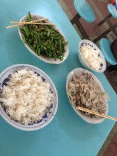 food blog 7
